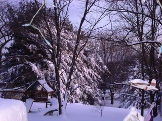 Snowmeddedon 363